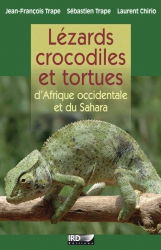 Lezards crocodiles et tortues Sahara